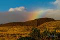 Haiau Rainbow print