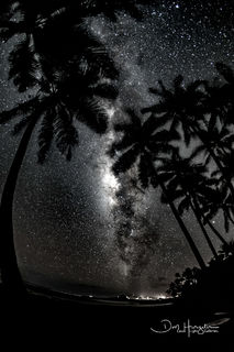 Black Sands Nights