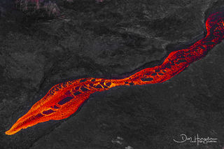 Lava snake