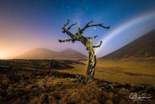 Moonbow Dream