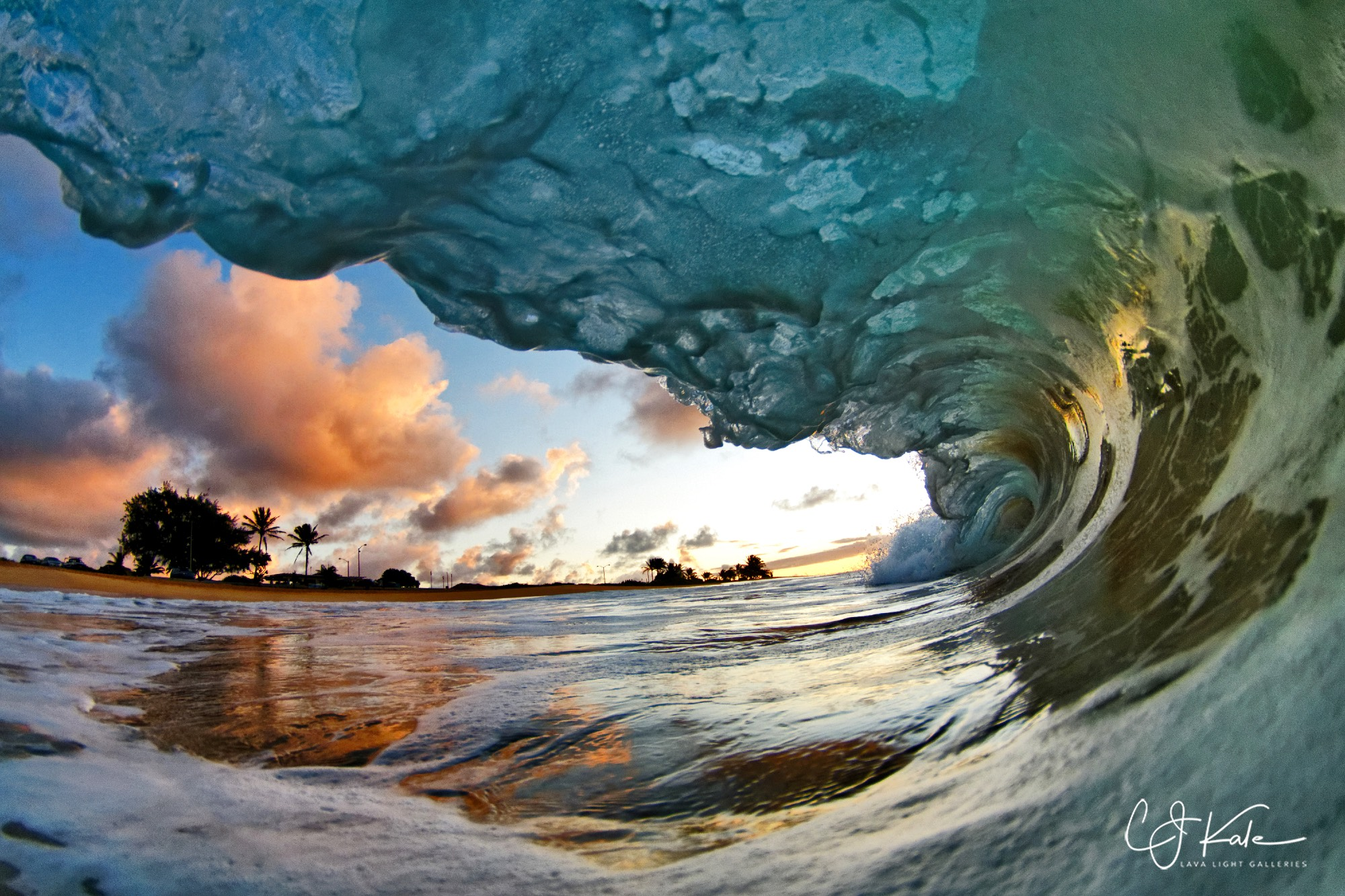 Love to be in the barrel.