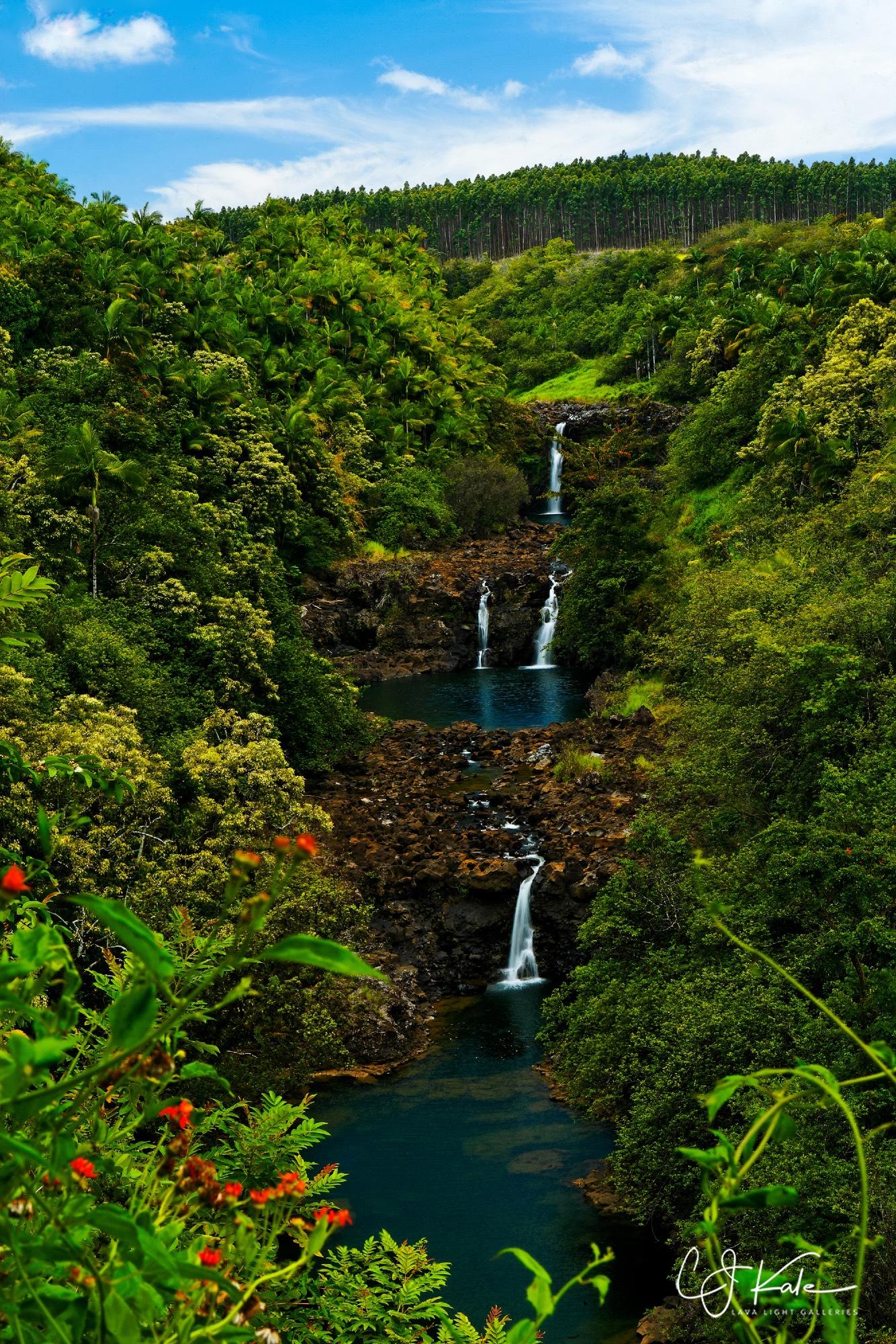 Big Island waterfall.